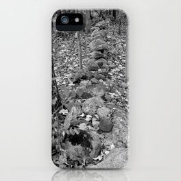Wall in the Woods iPhone Case