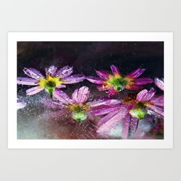 Coreopsis in Ice Art Print