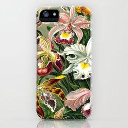 Vintage 1865 Botanical Orchids iPhone Case