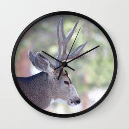 Watercolor Deer, Mule 07, RMNP, Colorado, The Bust Wall Clock