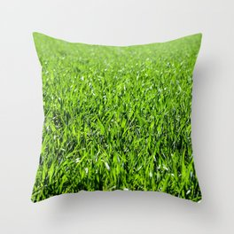 Green grass field in a sunny day Throw Pillow