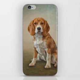 Drawing Dog Beagle iPhone Skin