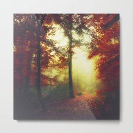 Fall Forest Mood Metal Print