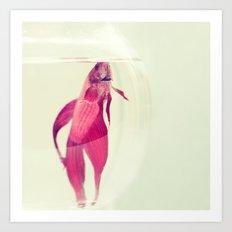 Red Fish. Art Print