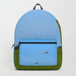 blue sky green grass Backpack