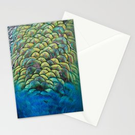 peacock closeup Stationery Cards