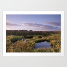 Cley Windmill, marshes and reed beds at sunrise. Cley-next-the-Sea, North Norfolk Coast, UK Art Print