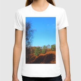 Winter's Afternoon Shadows T-shirt