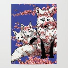 Spring Fox Poster