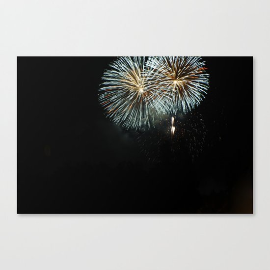 the Fireworks Canvas Print