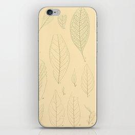 Ex. A iPhone Skin