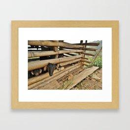 Village Goats Framed Art Print