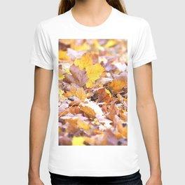 Golden Slumber T-shirt
