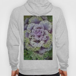 Little Cabbage Hoody