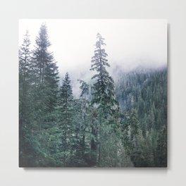 Evergreen Mists Metal Print