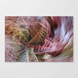 Abstract Hypnotic Garden Canvas Print