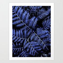 Blue Bracken Art Print