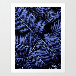Blue Bracken Art Print