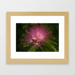 Powderpuff DPG161202a Framed Art Print