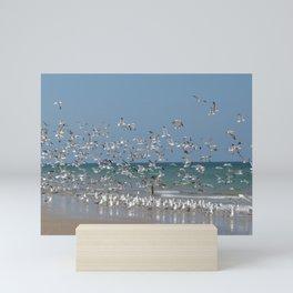 A Flock of Seagulls Mini Art Print