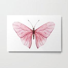 Butterfly 03 Metal Print