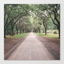 the heart melts on long driveways because rarely are our own paths in life as straight or as scenic Canvas Print