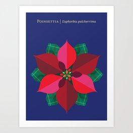 Christmas Poinsettia Blue Art Print
