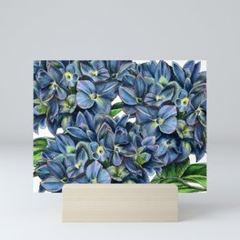 Realistic Hydrangea Drawing Mini Art Print