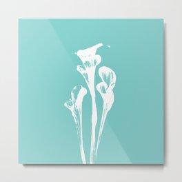Calla Lily - Aqua Metal Print