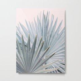 Palm Blush Metal Print
