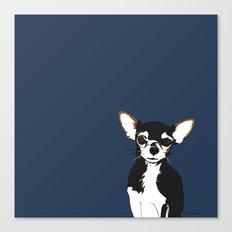 Zoe the Chihuahua Canvas Print