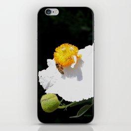 Matilija Poppy iPhone Skin