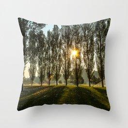 Penn State Arboretum Throw Pillow