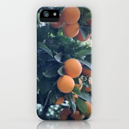 Oranges iPhone Case