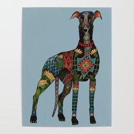 greyhound azure blue Poster