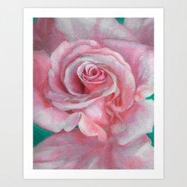 Gentle Rose Art Print