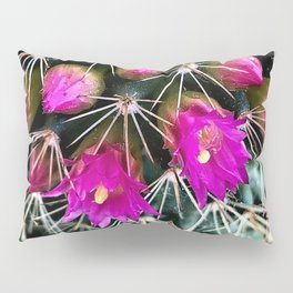 Prickly Beauty Pillow Sham