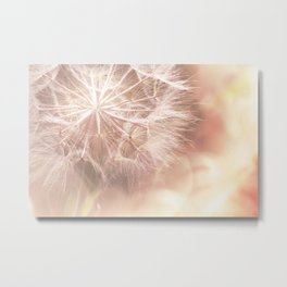 Pink Macro (2) Dandelion Flower - Floral Nature Photography Art and Accessories Metal Print