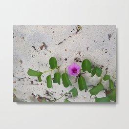 Bloom on the Beach Metal Print