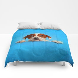 Cute Jack Russell Terrier Puppy Comforters