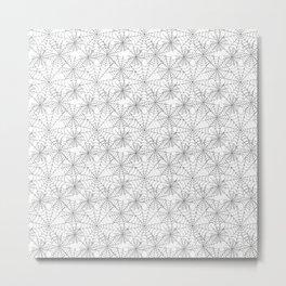 Spider web on white Metal Print