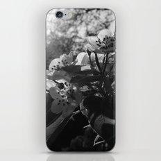 amazing spring morning  iPhone & iPod Skin