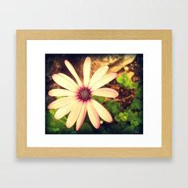 Take A Closer Look Framed Art Print