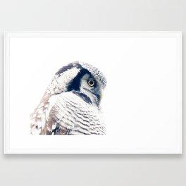 Hawkowl Framed Art Print