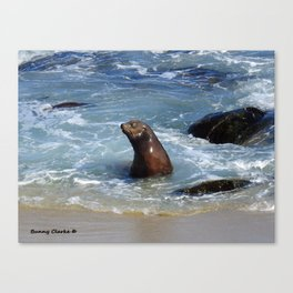 Frolicking Grand Poobah Canvas Print