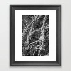 Abstract drift wood Framed Art Print