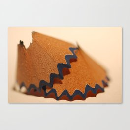 Shavings Canvas Print