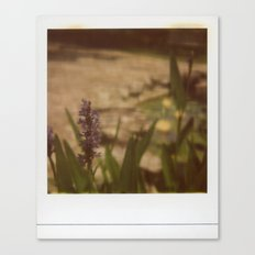 Mayfield Beauty Canvas Print