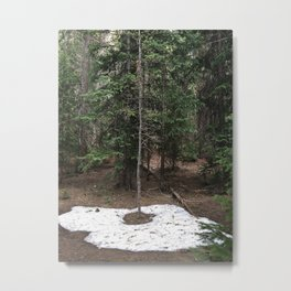 on the trail in breck Metal Print