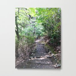 Kyoto, Bamboo Forest, Nature Metal Print